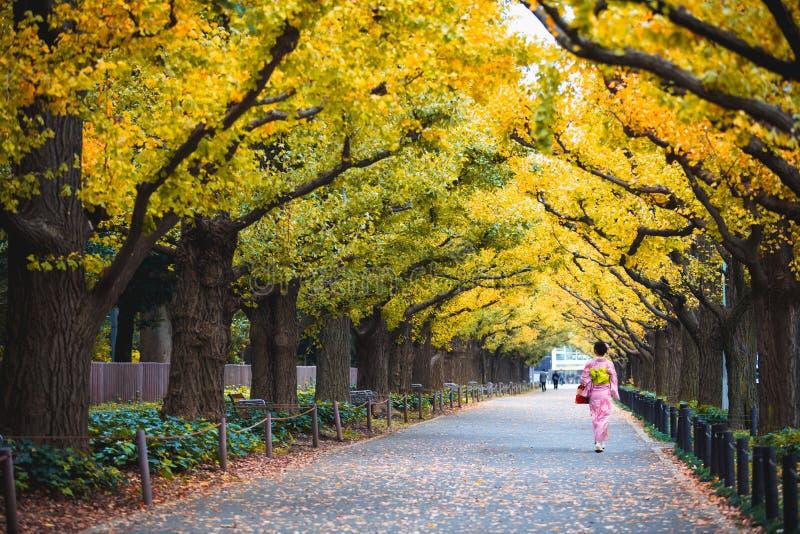 Woman in kimono walking along royalty free stock photo