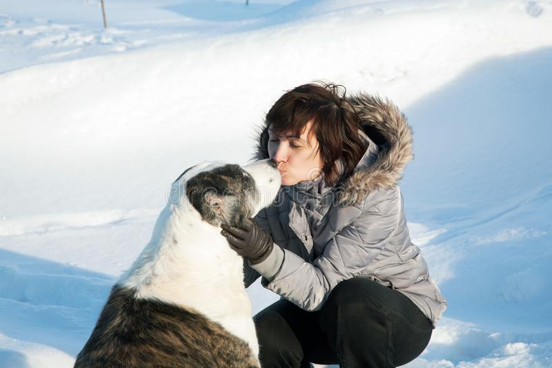 Woman kisses a dog on a sunny winter. Day stock photography