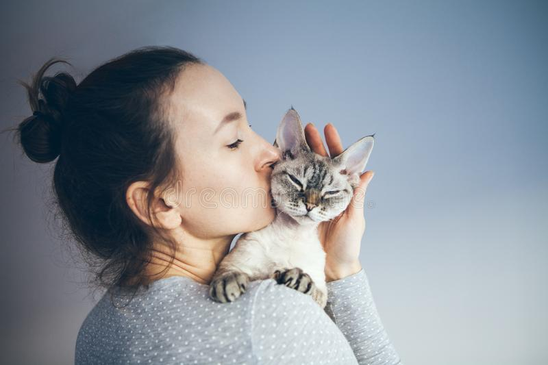 Woman is kissing and cuddling her sweet and cute looking Devon Rex cat. Kitten feels happy to be with its owner. Kitty sits in stock photography