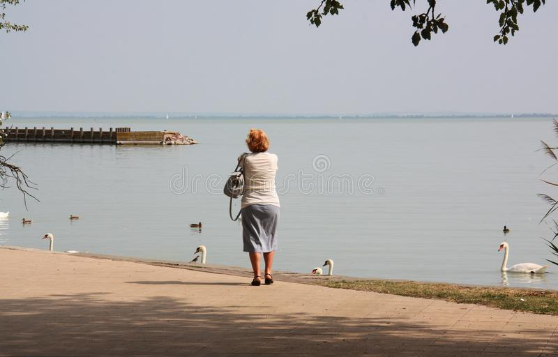 Woman on the lake royalty free stock photography