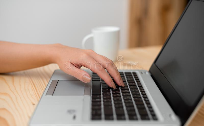 Young lady using a gray laptop computer and typing in the black keyboard with a mug of coffee or tea in the background royalty free stock photo