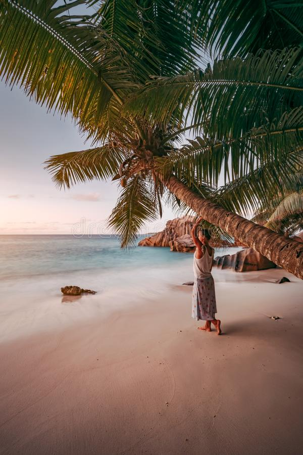 A woman lean against coconut palm tree in a gold sunset on a tropical sandy beach. La Digue, Seychelles royalty free stock images