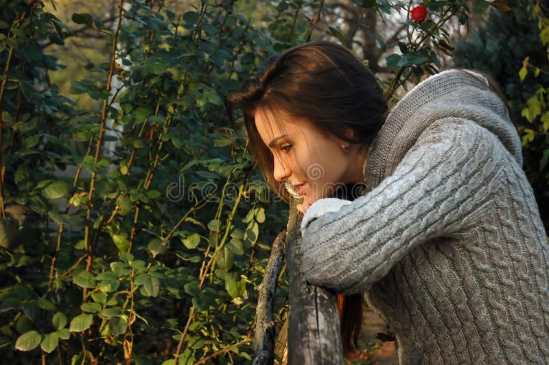 Woman leaning chin on old wooden fence royalty free stock photos