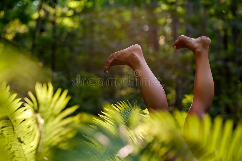Woman legs in the forest grass. Relax and Single woman concept. Happiness and lifestyle concept. Healthy leg veins royalty free stock photos