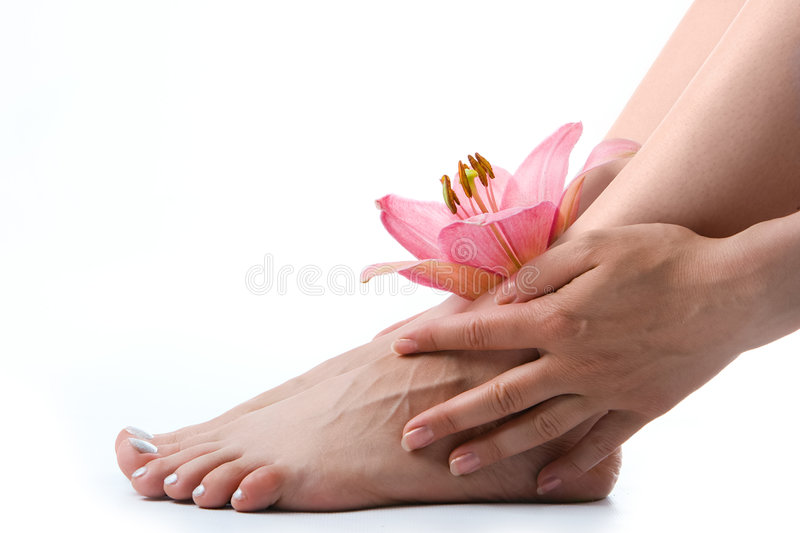 Download Woman legs with pink lily stock image. Image of aromatherapy - 2825043