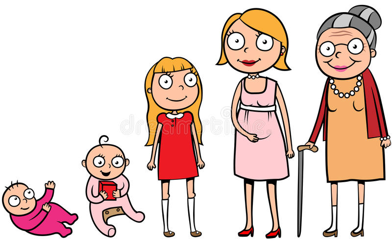 Woman life stages development royalty free illustration