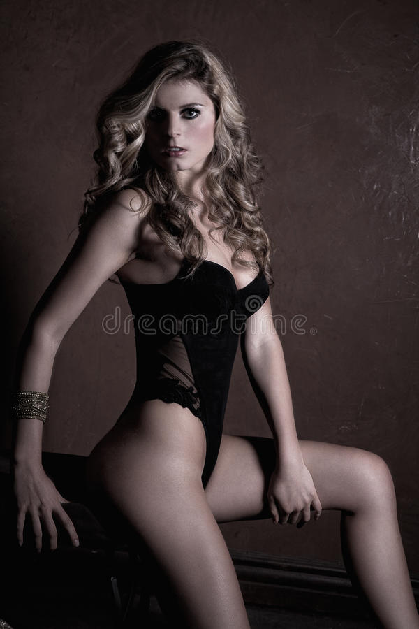 Download Woman in lingerie stock photo. Image of posing, person - 22125398
