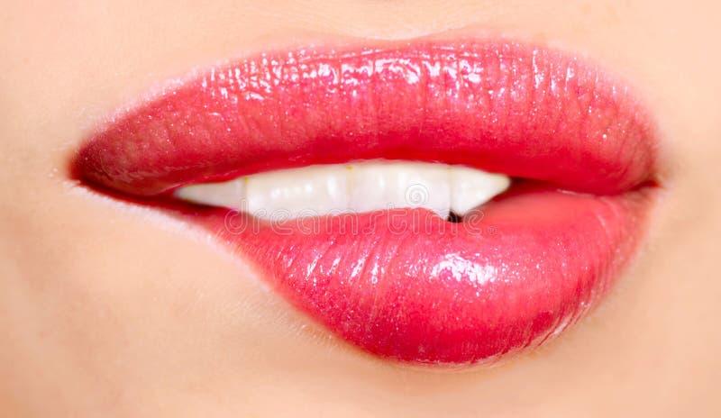 Woman lips royalty free stock photos