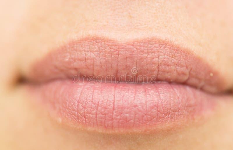 woman lips stock photos