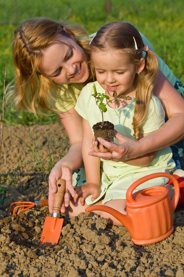 Woman and little girl growing healthy food stock images