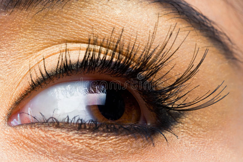 Woman with with long lashes. Young woman with long lashes royalty free stock photo
