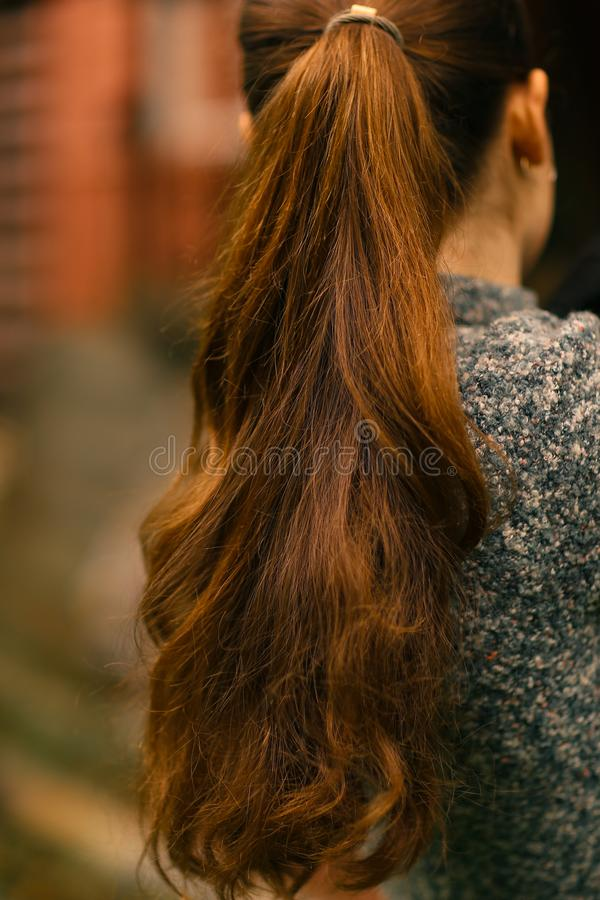 woman with long thick brown hair pony tale close up photo on green summer garden background stock photography