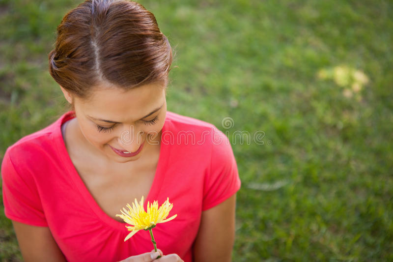 Download Woman Looking Downwards At A Yellow Flower Stock Images - Image: 25332344