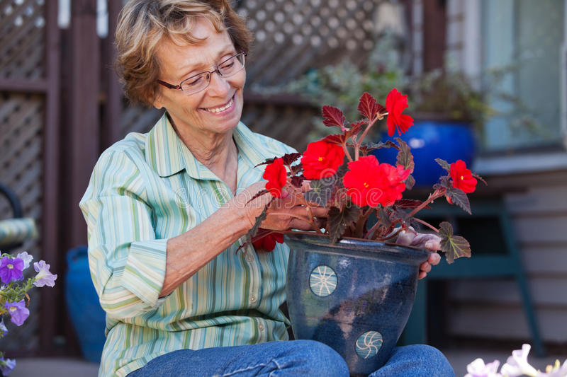 Download Woman Looking At Flower Pot Stock Image - Image: 21945483