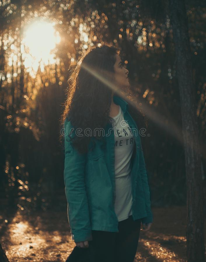 Woman Looking at the Trees royalty free stock photo