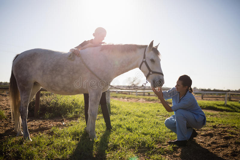 Woman looking at vet examining horse in barn. During sunny day stock photography