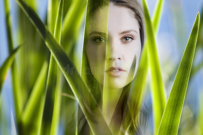 Woman looking at you stock images