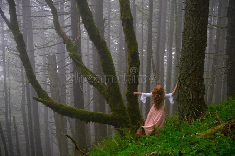 Woman lost in the woods. stock images