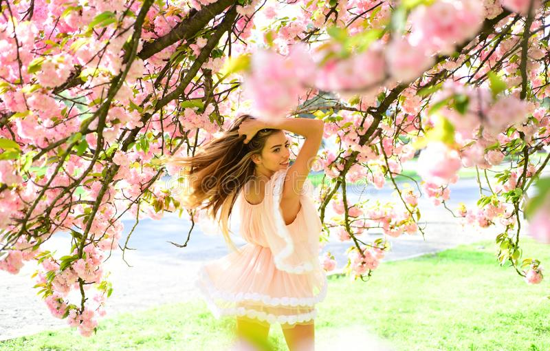 Woman in lovely pink fluttering dress walking in botanical garden. Girl with charming smile posing under sakura tree stock image