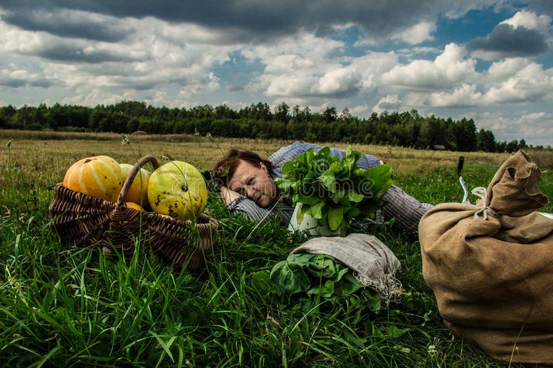 A woman is lying in a field near a pumpkin crop. Autumn landscape. Harvesting. Background royalty free stock photography