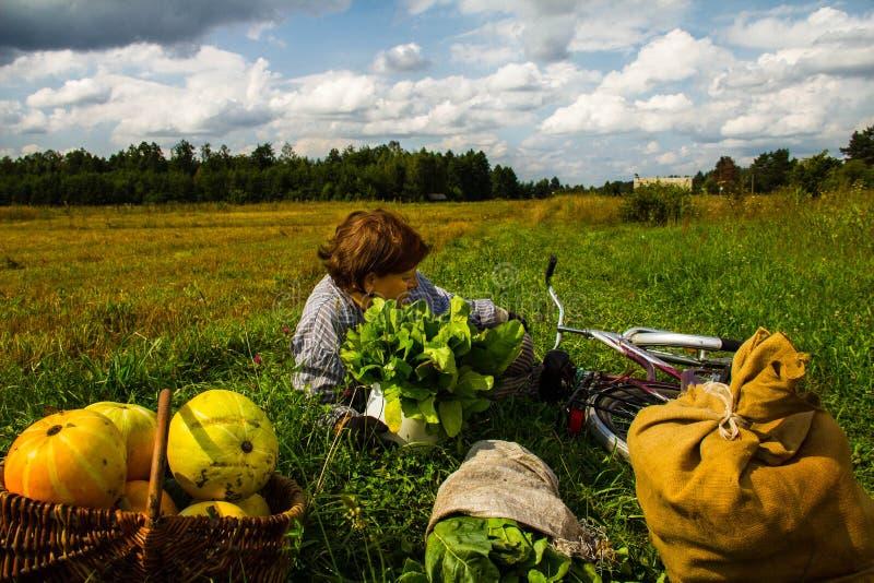 A woman is lying in a field near a pumpkin crop. Autumn landscape. Harvesting. Background stock photos