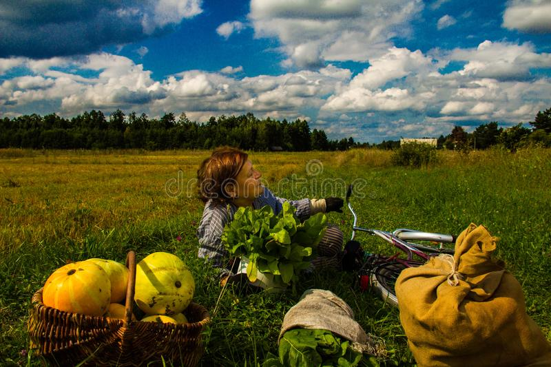 A woman is lying in a field near a pumpkin crop. Autumn landscape. Harvesting. Background stock photography