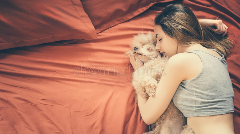 Woman is lying and sleeping with poodle dog in bed. royalty free stock photography
