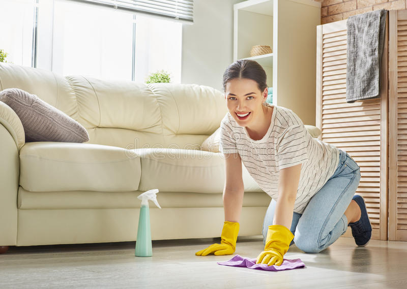 Woman makes cleaning royalty free stock image