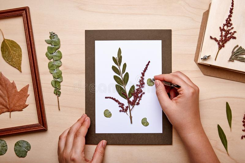 Woman making decoration with dried pressed flowers stock photography
