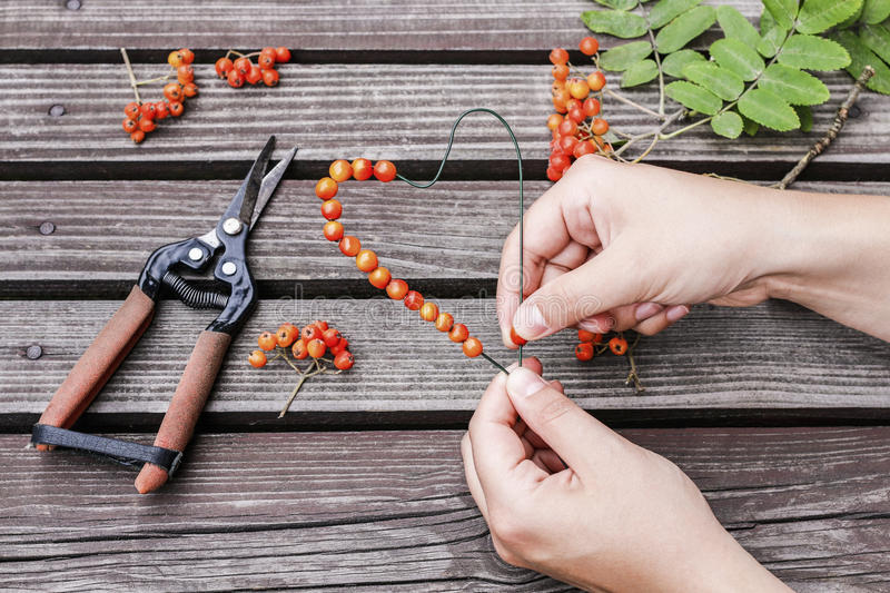 Woman making heart shape decoration with rowan berry. Florist at work: woman making heart shape decoration with rowan berry royalty free stock photos