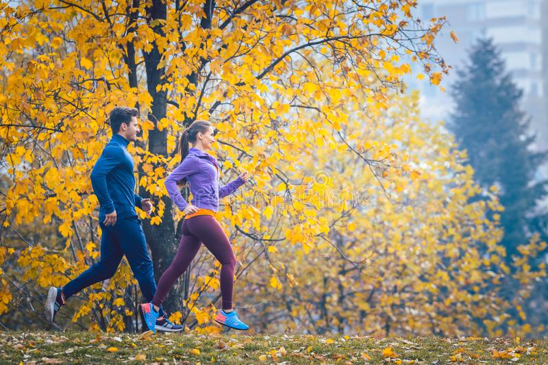 Woman and man jogging or running in park during autumn stock photography