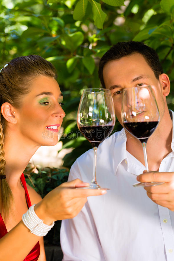 Download Woman And Man In Vineyard Drinking Wine Stock Image - Image: 29016559