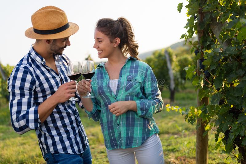 Woman and man in vineyard drinking wine stock photos