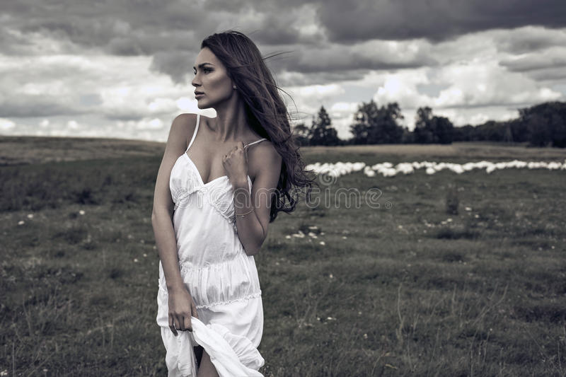 Woman on meadow. Young delicate woman on meadow royalty free stock photography