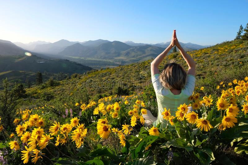 Woman meditating in meadows with sunflowers royalty free stock photography