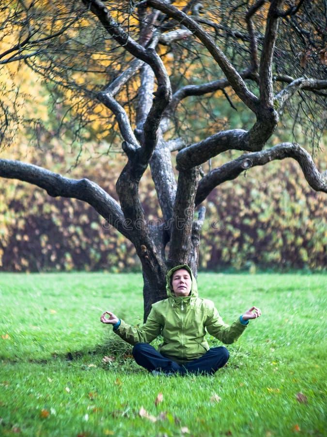 Woman meditating near a tree stock photos