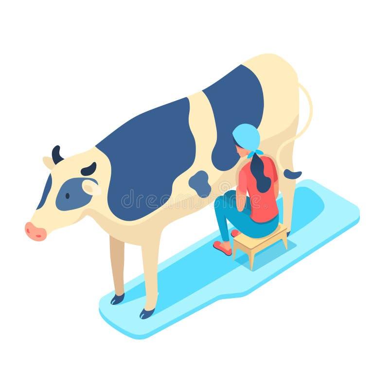 Woman milking cow isometric vector illustration stock illustration