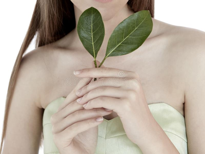 Woman Model hold green leaf for jewelry beauty health nature clean stock photography