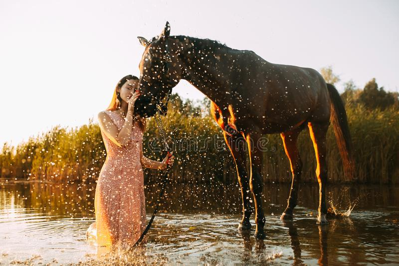 Woman is next to the horse against background of the water splashes at sunset. A young woman is next to the horse against background of the river and water stock photos