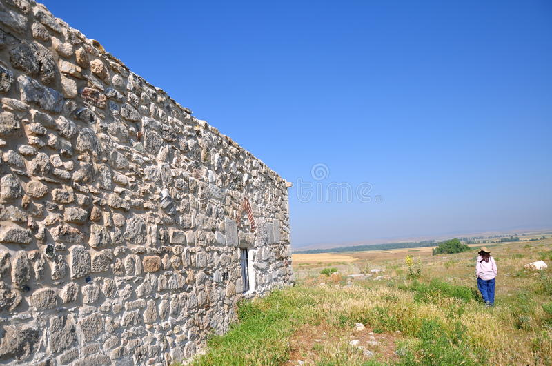 Woman next to the wall royalty free stock image