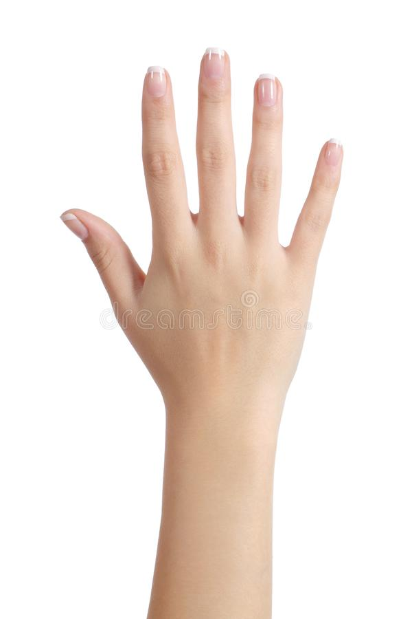 Woman open hand with french manicure stock image