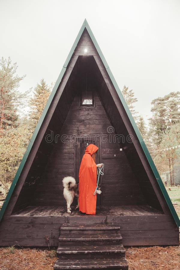 Woman owner and her dog malamute near their triangular black house ready for walk in the forest. Beauty girl with her pet big grey malamute on the street outdoor royalty free stock images