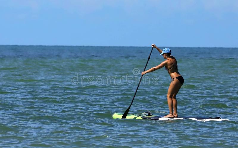 Woman on a paddle board in the Gulf of Mexico royalty free stock photography