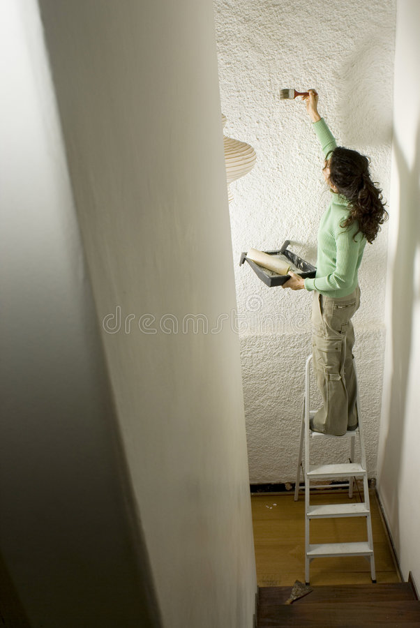 Download Woman Painting A Wall - Vertical Stock Photo - Image of midlife, ladder: 6062900