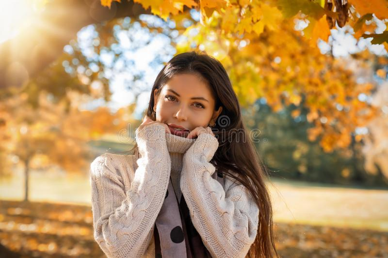 Woman in the park during autumn time. Young, attractive woman in the park during autumn time with orange leaves on the trees and golden sunshine stock photos