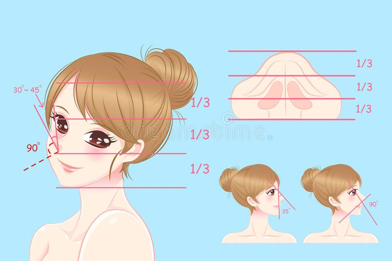 Woman with perfect face proportions. On the blue background vector illustration