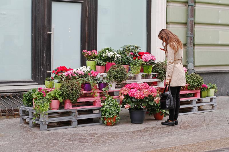 Woman photographing flowers on a mobile phone in Stoleshnikov Lane in Moscow. Moscow, Russia - April 28, 2016: Woman photographing flowers on a mobile phone in royalty free stock photos