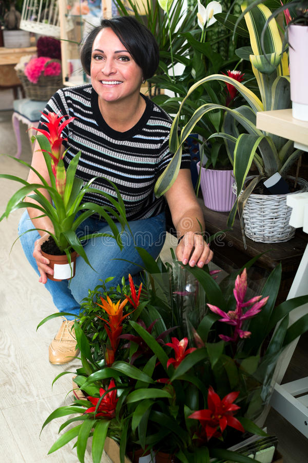 Woman picking a bromelia flower royalty free stock images