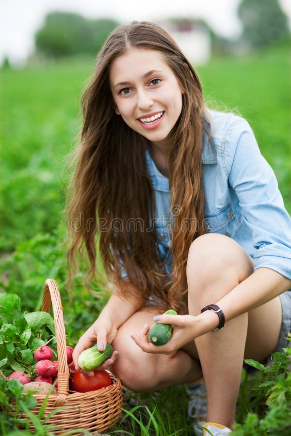 Download Woman Picking Fresh Vegetables Stock Image - Image: 25693537