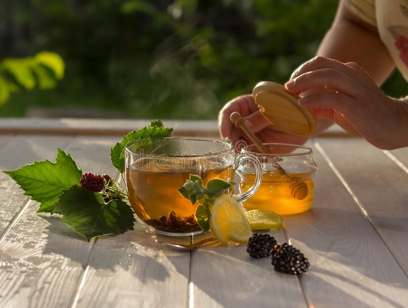 Woman is picking up honey. Healthy breakfast concept. Aromatic tea cup, berries and honey on a white wooden table in the garden stock photography